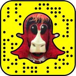 Chicago Bulls Snapchat username