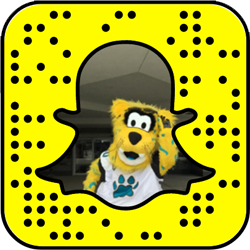 Jacksonville Jaguars snapchat